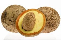Яблоко Mammee (Mammea Американа) стоковые изображения