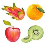 Яблоко, qiwi, апельсин и дракон приносить Стоковое Изображение