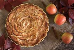 Яблочный пирог традиционного торжества праздника домодельный Стоковое Фото