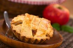 Яблочный пирог Стоковое фото RF