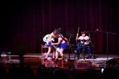 Ягнит рок-группа Стоковые Фото