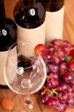Ягода красных виноградин в стекле. Стоковая Фотография RF