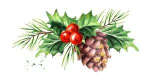 Ягода падуба символа рождества и Нового Года декоративная с конусом сосны и составом ветви Иллюстрация акварели нарисованная руко иллюстрация штока