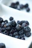 ягоды высушили можжевельник Стоковая Фотография RF