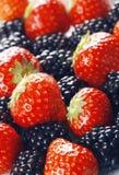 ягоды закрывают вверх Стоковые Фотографии RF