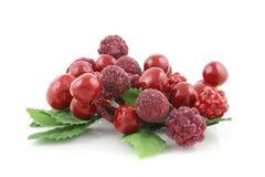 ягоды закрывают лето вверх Стоковое Изображение RF