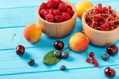 Ягоды и плодоовощ Стоковое Изображение RF