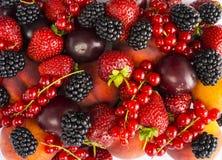 Ягоды и плоды смешивания на белой предпосылке Зрелые ежевики, клубники, красные смородины, сливы и персики r ( стоковые фото