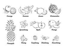 Ягоды и плоды Установите черно-белых значков иллюстрация вектора