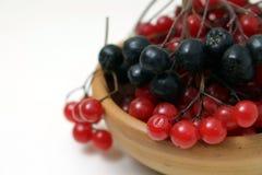 Ягоды калины и chokeberry в шаре глины стоковая фотография rf
