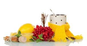 Ягоды калины, лимона, меда и специй для горячего чая, термометра в чашке при шарф, изолированный на белизне Стоковые Фотографии RF