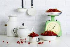 Ягоды красной смородины в чашке и шаре стоковое фото