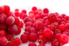 Ягоды красной смородины заморожено стоковое фото