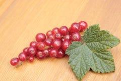 Ягоды красной смородины лежат на таблице Стоковое фото RF