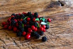ягоды одичалые Стоковое Изображение
