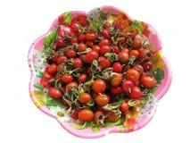 ягоды покрывают розовое одичалое Стоковое фото RF