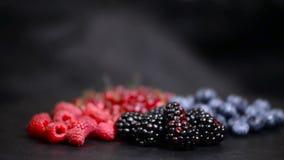 Ягоды различная красочная предпосылка вращения ягод Красная смородина, поленика, ежевика, вращать конца-вверх голубики видеоматериал