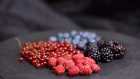 Ягоды Различная красочная предпосылка вращения ягод Красная смородина, поленика, ежевика, вращать конца-вверх голубики сток-видео