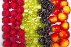 Ягоды различного лета свежие в шаре на изолированной белизне Ягоды Противостарители, диета вытрезвителя, органические плодоовощи  Стоковые Фотографии RF