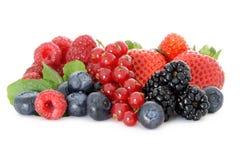 ягоды различные Стоковая Фотография