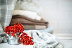 Ягоды рябины на деревянном столе космос экземпляра предпосылки осени жизнь осени все еще Стоковые Фото