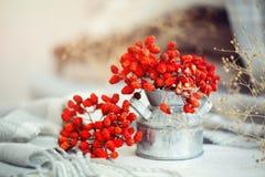 Ягоды рябины на деревянном столе крупный план предпосылки осени красит красный цвет листьев плюща померанцовый жизнь осени все ещ Стоковые Изображения