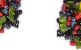 Ягоды смешивания на белой предпосылке Зрелые смородины, клубники, ежевики, голубики, blackcurrants, поленики с мятой le стоковая фотография