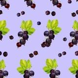 Ягоды черной смородины на пурпурной предпосылке в безшовной картине иллюстрация вектора
