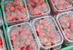 ягоды 1 Стоковые Фото