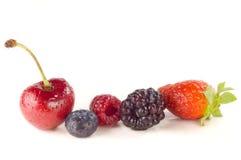 ягоды Стоковые Изображения