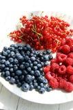 ягоды Стоковое фото RF