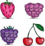 ягоды Стоковые Фотографии RF