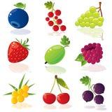 ягоды Стоковое Изображение RF