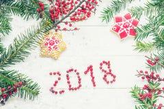 ` 2018 ` ягод надписи среди ветвей спруса и печений рождества Стоковые Изображения