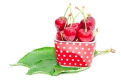 Ягода вишни естественного органического питания лета большая зрелая Стоковые Изображения RF
