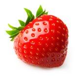 ягода детализирует клубнику красного цвета природы Стоковые Изображения RF
