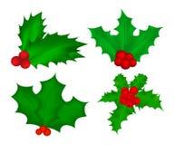 Ягода падуба, рождество выходит и приносить значок, символ, дизайн иллюстрация вектора