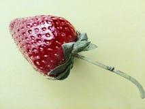 ягода, плодоовощ Стоковые Изображения