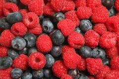 ягода славная Стоковая Фотография
