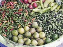 Ягода Турции томата паприки лимона перца chili ингридиентов тайского деревенского стиля свежая варя Стоковое Изображение