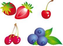 ягода Стоковое Изображение RF