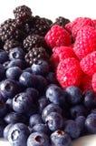 ягоды вертикальные Стоковое Фото