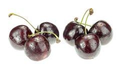 4 ягоды вишни изолированной на белой предпосылке Стоковые Фото
