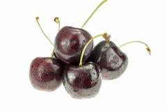 4 ягоды вишни изолированной на белой предпосылке Стоковые Изображения RF