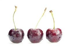 3 ягоды вишни изолированной на белой предпосылке Стоковые Фото