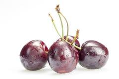 4 ягоды вишни изолированной на белой предпосылке Стоковая Фотография