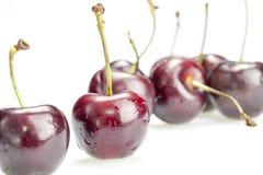 4 ягоды вишни изолированной на белой предпосылке Стоковое Фото