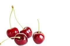 4 ягоды вишни на белой предпосылке Стоковое Изображение