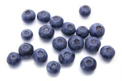 ягоды голубые Стоковое Изображение