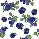ягоды делают по образцу безшовное Стоковые Изображения